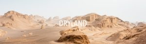 dryland edouard sepulchre inframe in frame interview maroc morocco landscape desert documentary photography contemporary